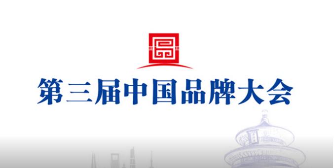 第三届中国品牌大会发布会(视频)